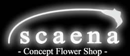scaena - Concept Flower Shop -